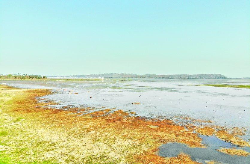 डेड लेवल से 3 फीट दूर बड़ा तालाब, केरवा का जल स्तर भी घटा