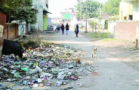 स्वच्छता की हकीकत: डोर-टु-डोर कचरा कलेक्शन पर हर माह 10 लाख खर्च, फिर भी शहर गंदा