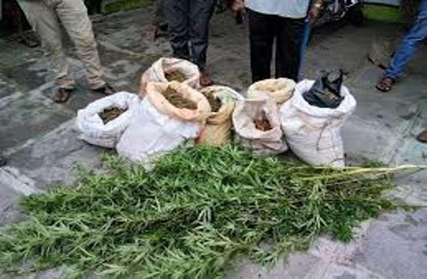 मादक पदार्थ ले जा रहे युवक को पुलिस ने किया गिरफ्तार, 5 किलो गांजा किया जब्त
