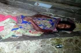 गर्भवती महिला को बेरहमी से पीटा, अस्पताल में भर्ती