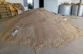 गेहूं-चना का बंपर उत्पादन, लेकिन समर्थन मूल्य पर पूरी उपज नहीं बेच पाएंगे किसान
