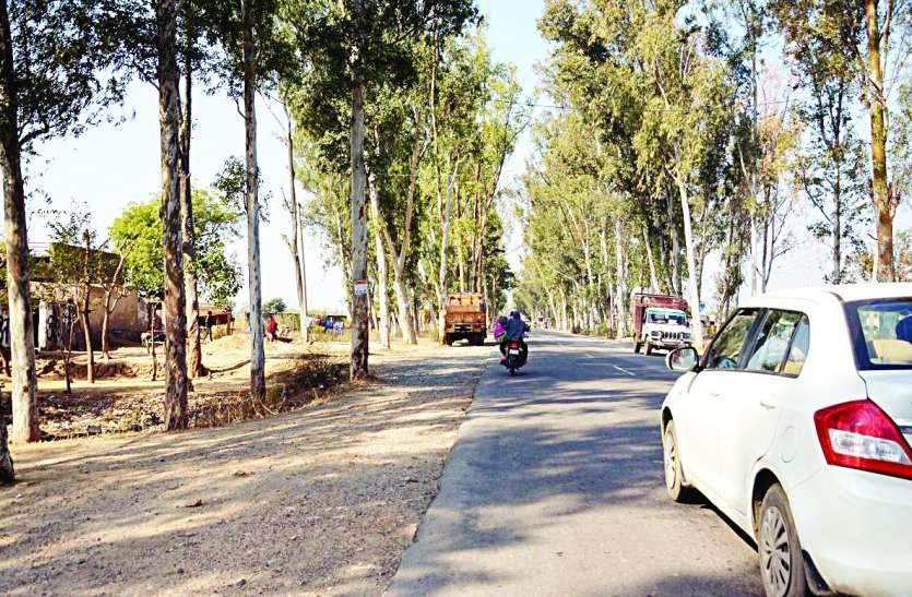 अलवर के इस 22 किलोमीटर के रोड पर 5 साल में हो चुकी 207 लोगों की मौत, अब 122 करोड़ की लागत से बनने जा रही नई सडक़