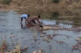 गाड़वा में थमा पानी तो नपा अमले ने नदी में उतरकर बनाया रास्ता