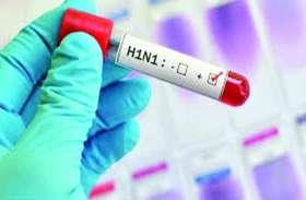 स्वाइन फ्लू के 14 नए मरीज