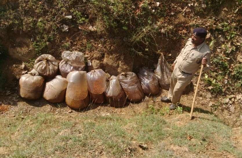 120लीटर कच्ची शराब, ८२० किग्रा महुआ लाहन जब्त