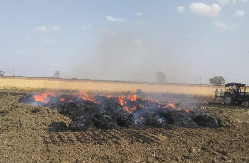 शॉर्ट सर्किट से लगी आग, नौ एकड़ की जली फसल