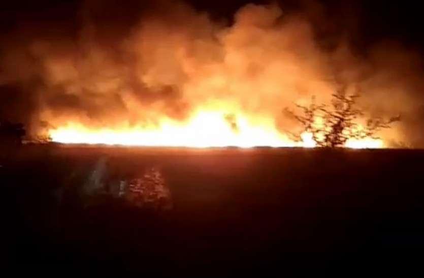 होशंगाबाद के 25 गांवों में भीषण आग से मची तबाही, तीन की मौत; कई झुलसे