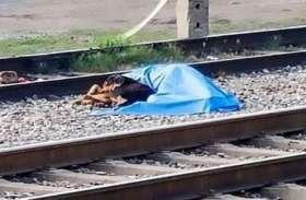 रेलवे ट्रैक पर पड़ी थी शख्स की डेड बॉडी लेकिन बगल में बैठा था एक कुत्ता और फिर...