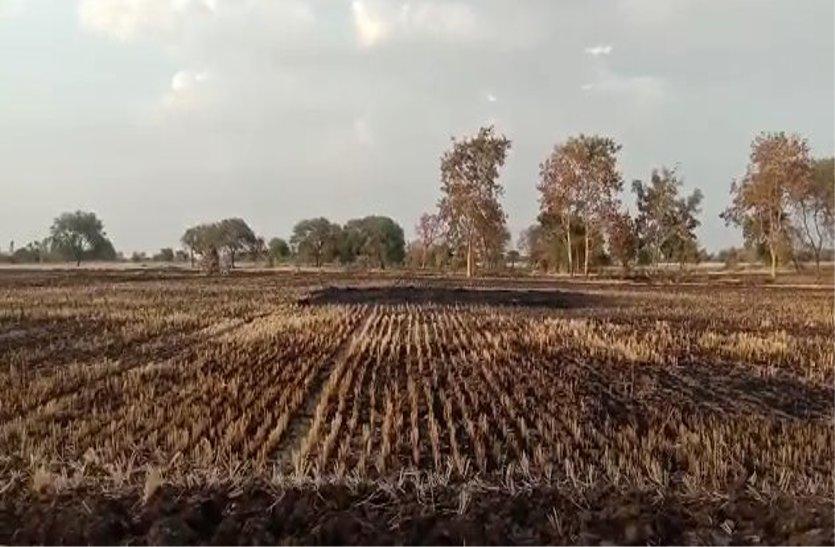 हादसों के बाद भी जागरूक नहीं हो रहे किसान, नरवाई में लगा रहे आग