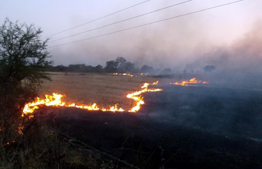 किसानों की फसल में फिर लगी आग, डेढ़ करोड़ का नुकसान