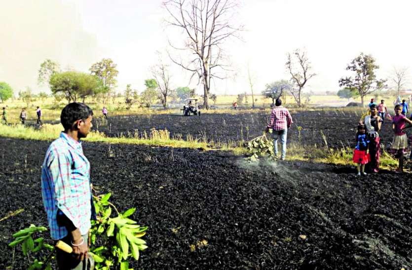 किसानों की 20 एकड़ की फसल राख