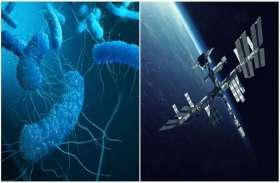 अंतरिक्ष केंद्र में पाए गए जीवाणु, वैज्ञानिकों ने कहा- 'मानव जाति के स्वास्थ्य को खतरा'