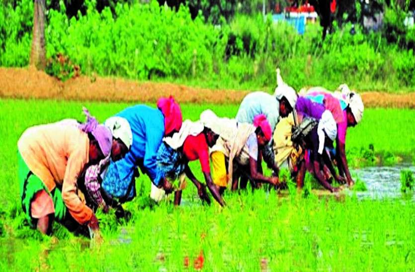 फसल से किसानों की आय दोगुनी करने की घोषणा कागजों में