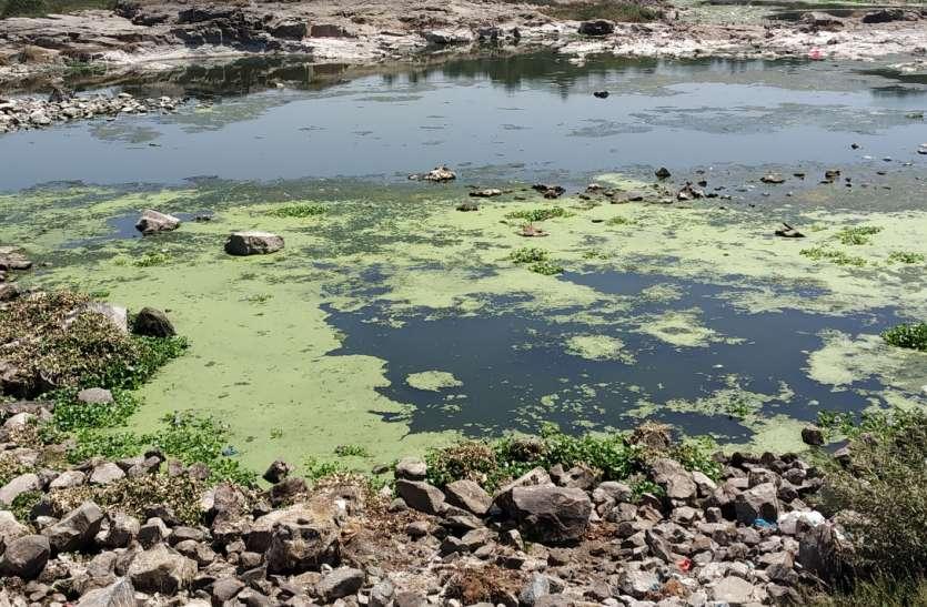 दमणगंगा नदी में पानी नहीं, छठ व्रतियों मेंनिराशा