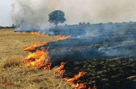 भीषण आग से दो गांवों में 70 बीघा गेहूं की फसल जलकर राख, किसान हुए बर्बाद