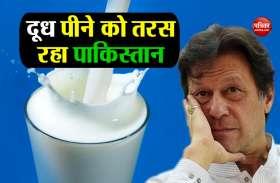 दूध के लिए भी तरस रही पाकिस्तान की जनता, 180 रुपए प्रति लीटर पहुंचा भाव