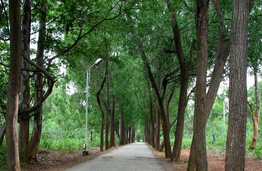 बीच शहर में है ये छोटा वन जहां आते ही 4 डिग्री कम हो जाता है तापमान