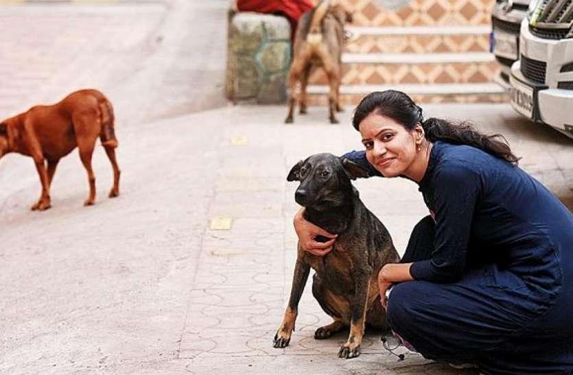 ये महिला आवारा कुत्तों को खिलाती थी खाना, लेकिन फिर हुआ कुछ ऐसा कि अब चुकानी पड़ेगी ये बड़ी कीमत