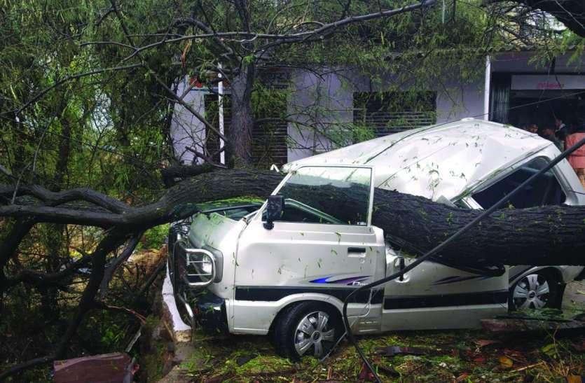 बारिश व तेज हवाओं से रेलमगरा क्षेत्र में सैकड़ों पेड़ धराशायी, टीन शेड उड़े, ट्रांसफार्मर गिरे, रास्ते जाम