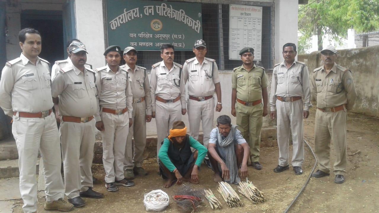 शिकार के फिराक में बैठे शिकारियों को वनविभाग ने किया गिरफ्तार