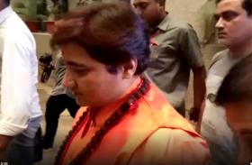 भाजपा की प्रत्याशी बनी प्रज्ञा ठाकुर ने प्रेस कांफ्रेस में बोली बड़ी बात, देखें VIDEO