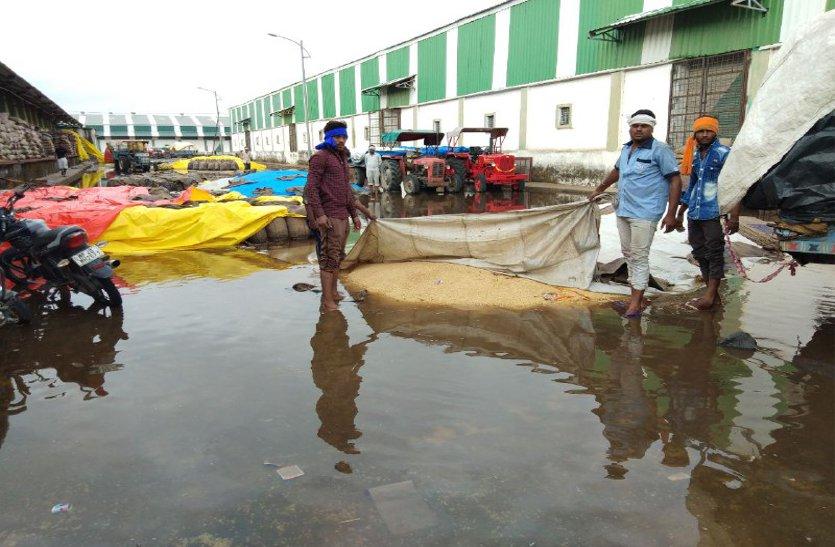 video: बारिश बनी आफत, पानी में डूब गया गेहूं, किसानों को हुआ नुकसान