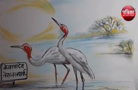वर्ल्ड हेरिटेज में शामिल फिर भी चिंतित हैं यहाँ प्रवासी देखिए कार्टूनिस्ट लोकेन्द्र सिंह की नजर से