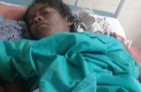 बिग ब्रेकिंग.. महुआ बिनने गई महिला पर मादा भालू ने किया हमला, पूरा पेट कर दिया क्षतिग्रस्त