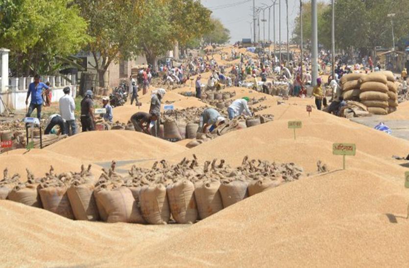 इस बार गेहूं बेचने से क्यों कतरा रहे किसान