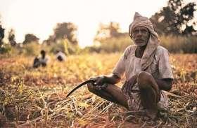 जाट, ठाकुर, जाटव बन कर वोट दिया, 5 साल किसान बन कर संषर्घ करेंगे...