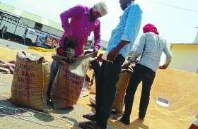 मंडी में किसानों के हक पर 'डाका' डाल रहे दलाल