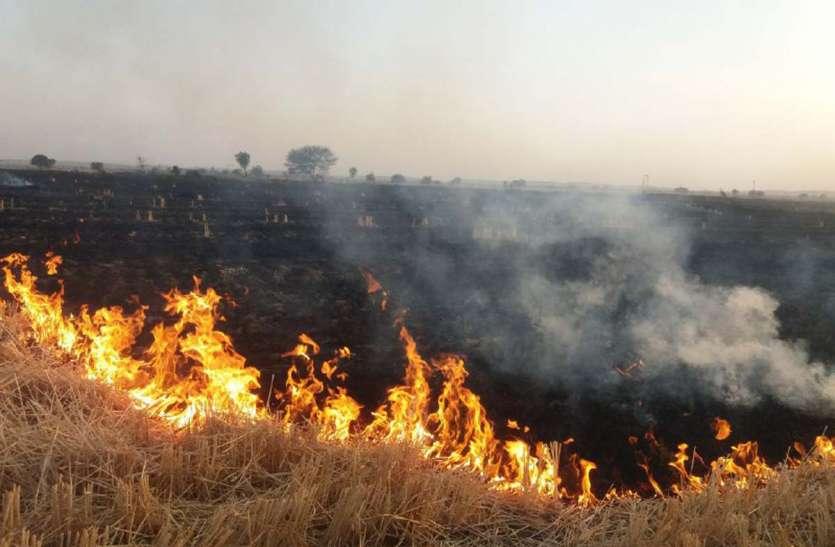 BIG NEWS : पनवाड़ क्षेत्र आग का तांडव, 400 बीघा फसल नष्ट ,किसानों के अरमानों फिरा पानी