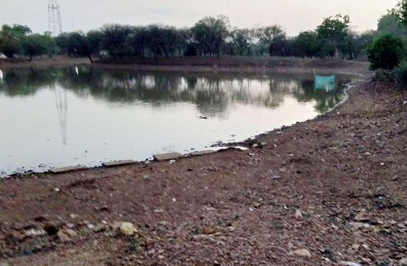सूखने लगे नदी-तालाब, निस्तारी के संकट से जूझ रहे जीव-जंतु