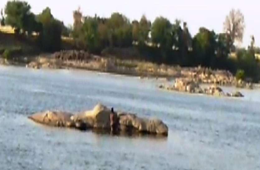 नदी किनारे मगरमच्छ ने चरवाहे को बनाया अपना शिकार,  बकरियां चरा रहा था चरवाहा