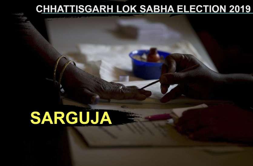 पहले दो घंटे में सरगुजा लोकसभा क्षेत्र में हुआ 15.90 प्रतिशत मतदान