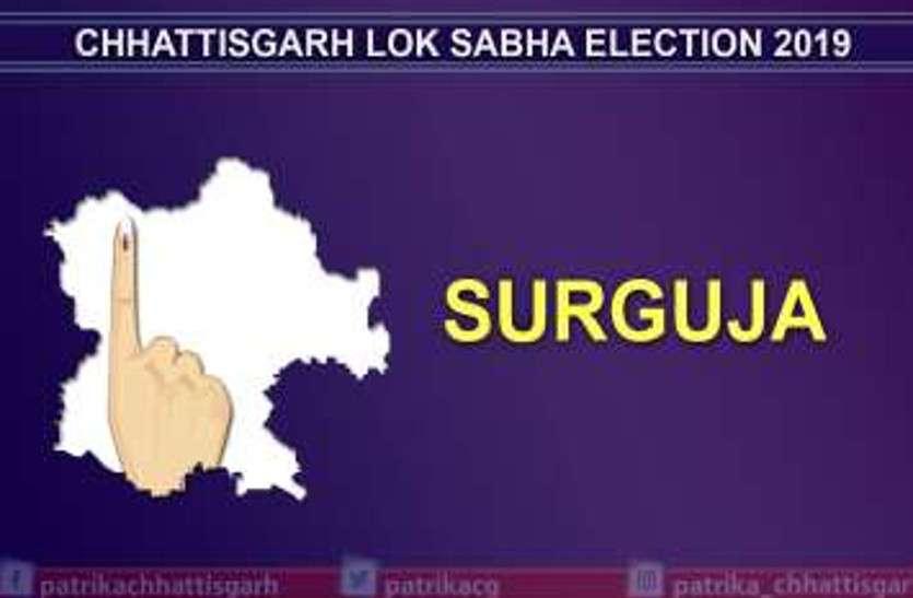 सरगुजा लोकसभा सीट पर 77.29 प्रतिशत हुई वोटिंग, जानें यहां की 8 विधानसभा सीटों पर मतदान के पूरे आंकड़े