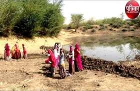 VIDEO : अच्छा प्रयास : भीषण गर्मी में पशुओं के हलक तर करने की कवायद, बावड़ी से भरवा रहे नाडी