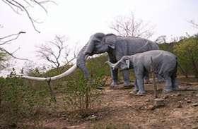 Video: हाथियों से बचने वन विभाग ने बनाया हाई टेक मास्टर बेरिकेडिंग