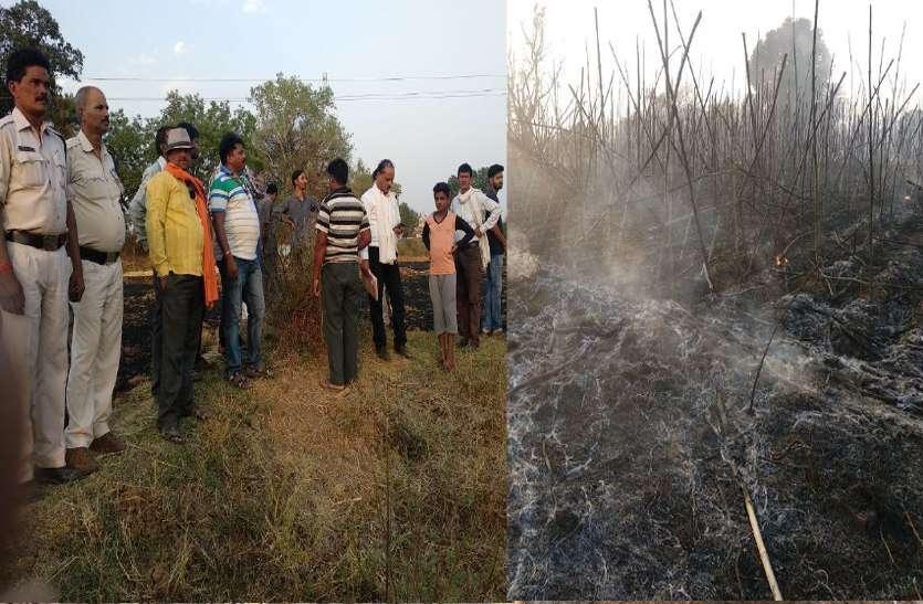 किसानों के ऊपर इस बिपदा के मंजर को देखकर सबकी आंखें नम, वीडियो में देखें कैसे जान की बाजी लगाकर किसान बुझा रहे आग