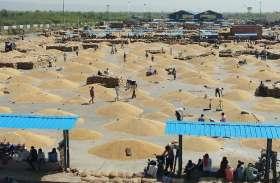 बूंदी के किसानों पर फिर आई यह आफत, अब उपज बेचने के लिए कतारों में फंसे