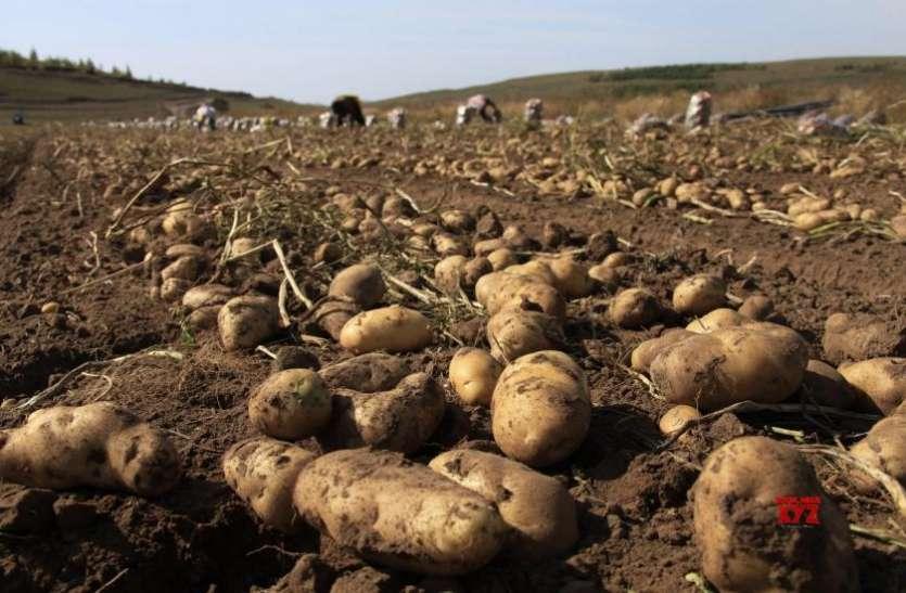 किसानों के साथ आई गुजरात सरकार, पेप्सिको ने किया 9 किसानों पर केस