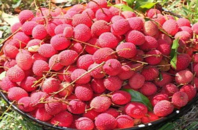 गर्मियों में रोजाना लीची के सेवन से ये बीमारियां हो जाएंगी दूर, पढ़ें 10 बातें