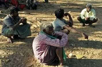 विशेष संरक्षित जनजाति में शामिल पहाड़ी कोरवा और बिरहोर के 10 वर्ष में बढ़े सिर्फ 321 सदस्य, टीआरआई ने जारी किए आंकड़े