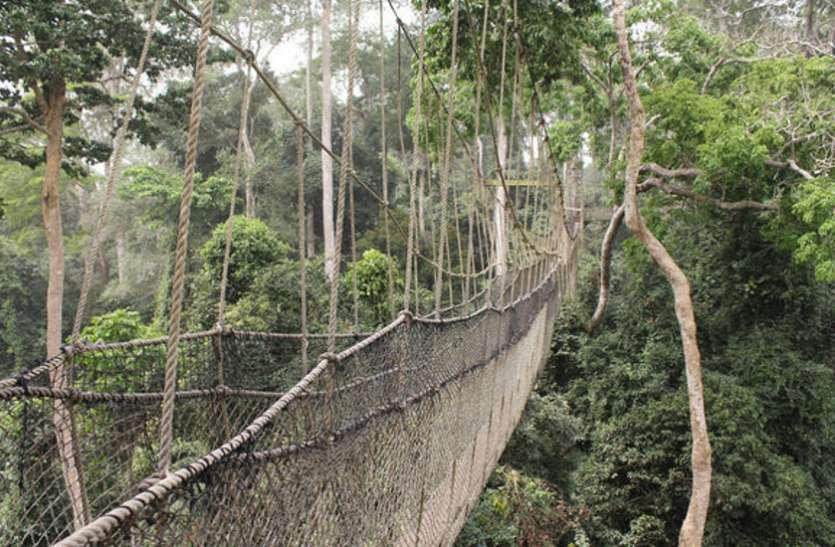 सुकमा के दर्जनों गाँव को बाहरी दुनिया से जोड़ता है सीआरपीएफ का बनाया रस्सी का पुल