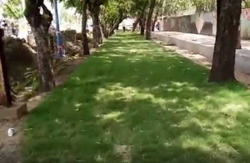 गौरव पथ में ब्लॉक को हटा कर लगाई गई हरी घास