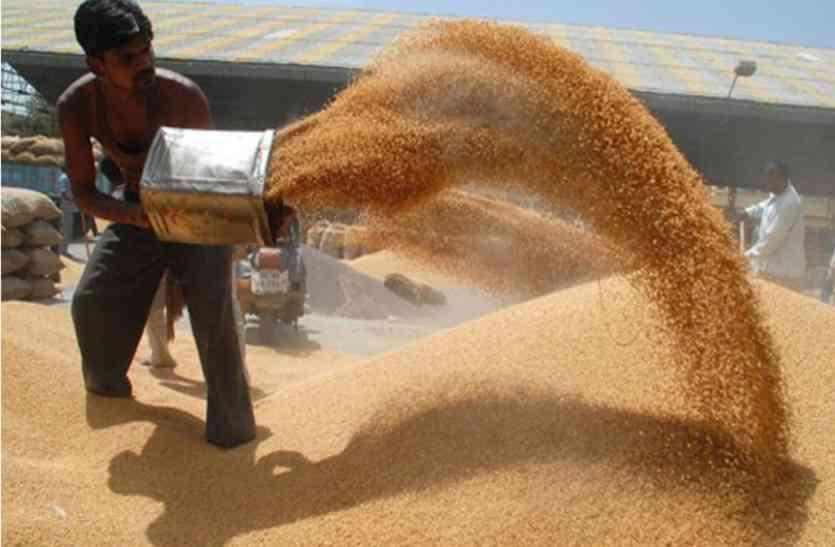 अन्नदाता को अपना गेहूं बेचने के लिए भी देनी होती है रिश्वत- देखें वीडियो