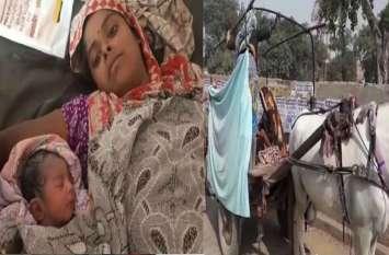 शर्मनाक: सूचना के दो घंटे बाद भी नहीं आयी एंबुलेंस, सरकारी अस्पताल के सामने तांगे में दिया बच्ची को जन्म
