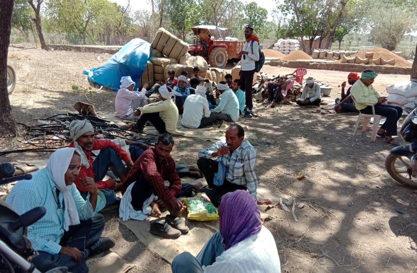 अन्नदाता की ऐसी परेशानी शायद और किसी जिले में नहीं होगा, देखें वीडियो