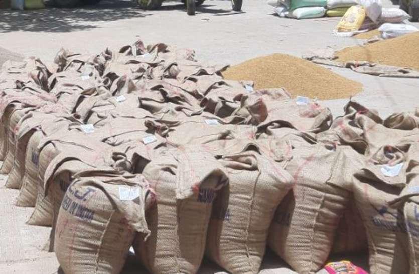अच्छी गुणवत्ता का अनाज खरीद केंद्रों तक लाने के बाद भी ठगे जा रहे किसान, जानिए राज