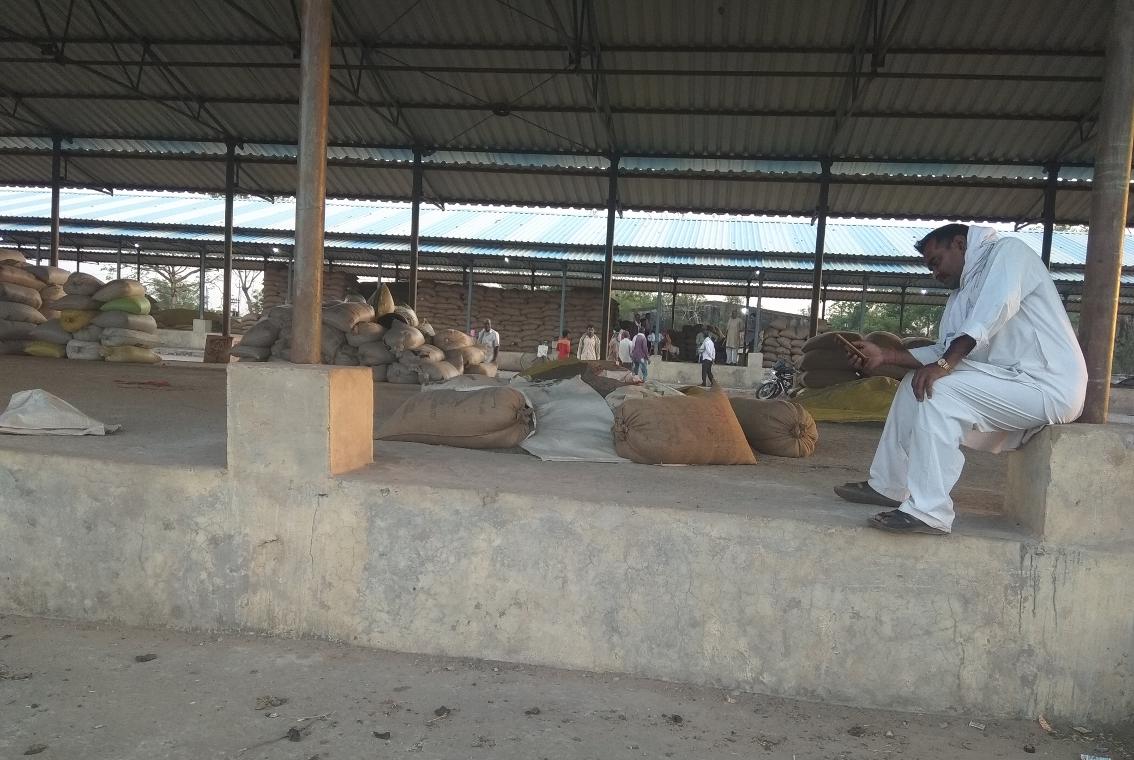 सरकार की जय हो...अनाज मंडी में भूखे-प्यासे बैठे हैं किसान